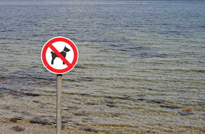 Hunde verboten. Foto: Thomas-Siepmann