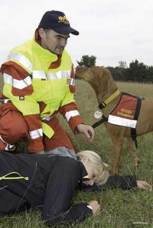 ASB-Rettungshund