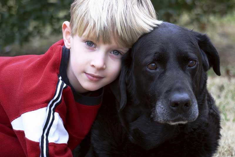 Scchmussen... Bandwurmbefall beim Hund bleibt häufig unbemerkt
