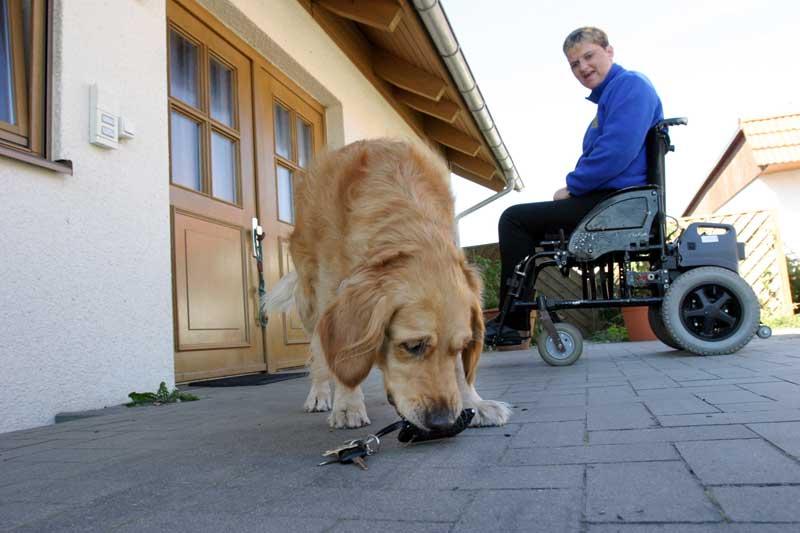 Behinderten-Begleithund. Foto: Mars
