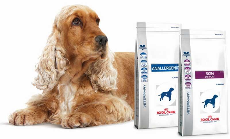 Royal Canin - Hilfe bei Allergien und Juckreiz