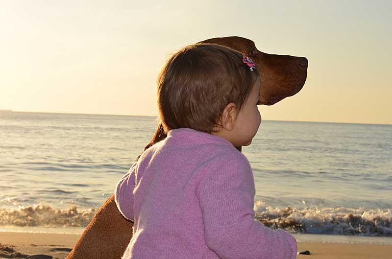 child-dog_pb