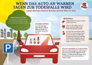 Wenn das Auto an warmen Tagen zur Todesfalle wird (Grafik: ©-VIER-PFOTEN)