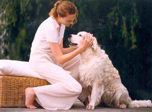 Hunde sind gerne hilfsbereit (Foto: IVH/Berndt Andresen)