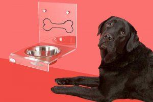 Innovationen bei Tierfertignahrung
