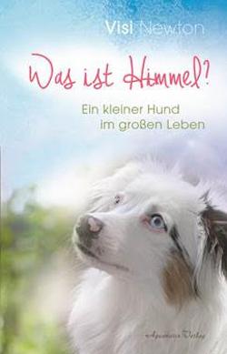 Die berührende Suche des kleinen gehörlosen Hundes Visi nach der himmlischen Weisheit des Lebens.