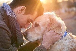 Der beste Freund des Menschen (Foto: Bundesverband für Tiergesundheit e.V.)