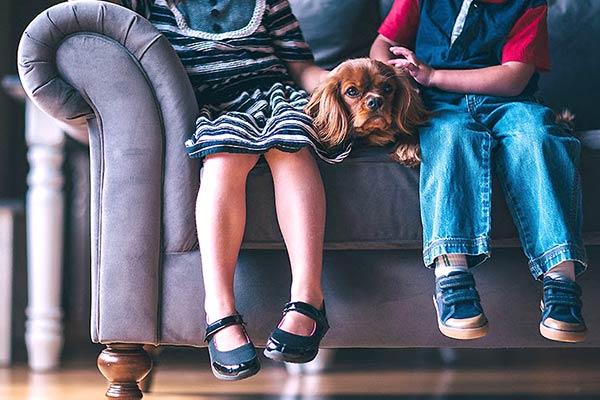 Hunde mit engem Kontakt zu Kindern sollten regelmäßig entwurmt werden (Foto: Parasitenportal)