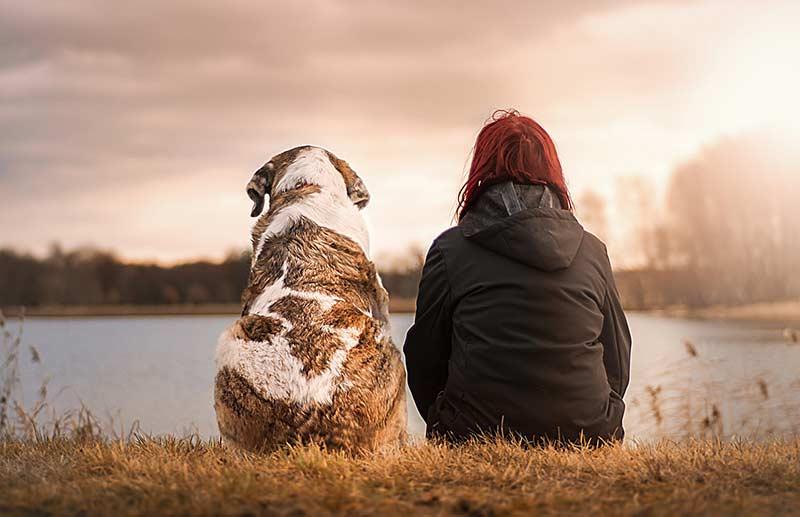 Besonders in den traurigen Momenten ist es für unsere Tiere wichtig, dass wir sie nicht allein lassen, sondern bei ihnen sind, um gemeinsam Abschied zu nehmen.