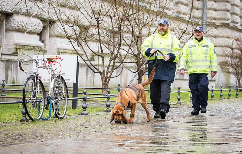 Erfolgreicher Schnüffler: Ein Bloodhound mit seinen Hundeführern von der sächsischen Polizei (Foto: Polizei Sachsen).