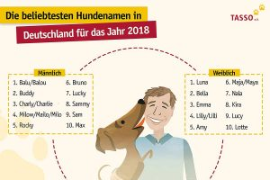 Die Top Ten der beliebtesten Hundenamen im Jahr 2018 (Grafik: © TASSO e.V.)