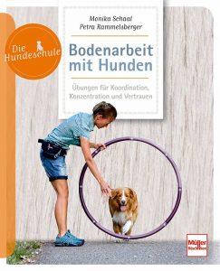 Bodenarbeit mit Hunden - Beschäftigung und Übungen für Geschicklichkeit und Koordination