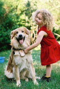 Kind + Hund - Mein Spielzeug – dein Spielzeug. Es gilt: Das Spielzeug des anderen ist tabu! (Foto: ©: Industrieverband Heimtierbedarf (IVH) e. V.)