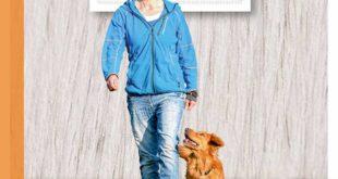 Die Begleithund-Prüfung gilt als die wichtigste Prüfung im Hundesport