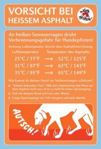 Eine einigermaßen angenehme Lufttemperatur kann Hundehalter über die Verbrennungsgefahr für Hundepfoten durch den Untergrund hinwegtäuschen