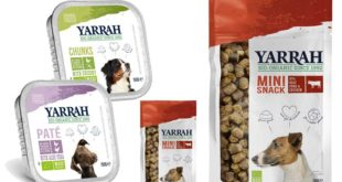 Getreidefreies Futter für Hunde und Katzen