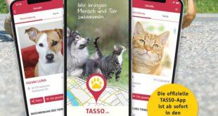 """Die App """"Tipp-Tapp"""" hilft bei der Suche nach entlaufenen Tieren (Foto: © TASSO e.V.)"""