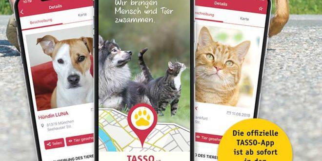Mobile App zur Tiersuche