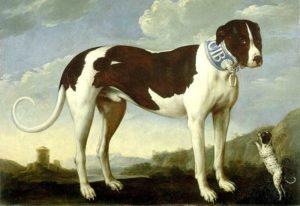"""Sonderausstellung """"Treue Freunde. Hunde und Menschen"""""""
