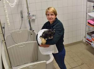 Tierheimleiterin Susanne David vom Hamburger Tierschutzverein