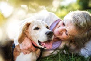 Erleichterungen für alte Hunde